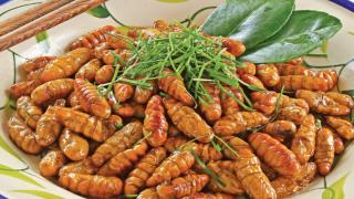 Người MỸ trải nghiệm ăn thử món tằm của Việt Nam