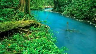Ghé thăm dòng sông màu lam ngọc kỳ lạ